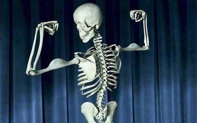 Saját csont és csontpótló anyagok